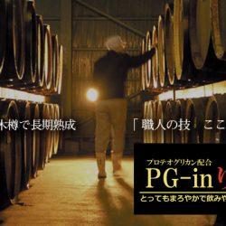 【プロテオグリカン配合の健康・美容ドリンク】PG-inりんご酢